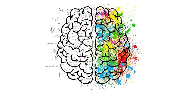 Brein DT